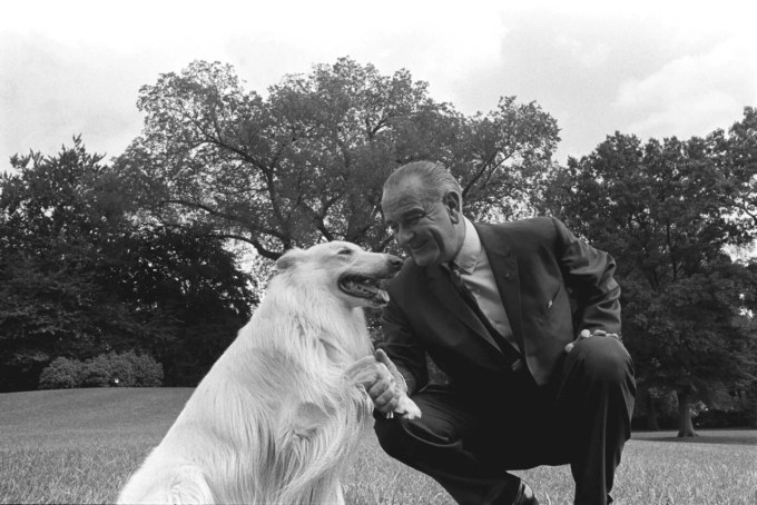 President Lyndon Johnson with Blanco, a white collie, Sept. 22, 1966.