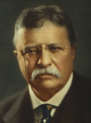 Quotations from the speeches and other works of Theodore Roosevelt