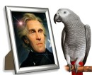 Andrew Jackson's pet bird, Poll, swore like a sailor.