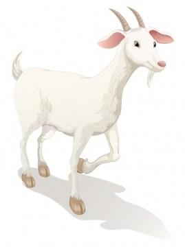 abraham-lincoln-goat-nanko