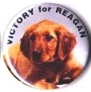 reagan-victory-button