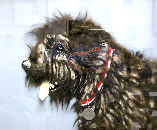 "The ""Lucky portrait"" features real hair from Ronald Reagan's dog."