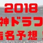 2018年 阪神タイガース ドラフト予想 1~4位 予想