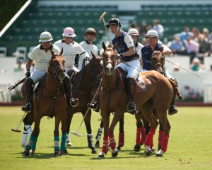 Prince William plays polo
