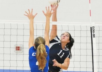 GVB: Energized Owls sweep Cate to earn share of Condor title