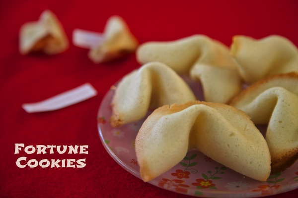 Food Craft: DIY Fortune Cookies