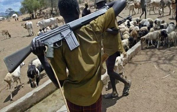 Herdsmen Shot, Used Cows To Attack Me – Oyetola's Aide