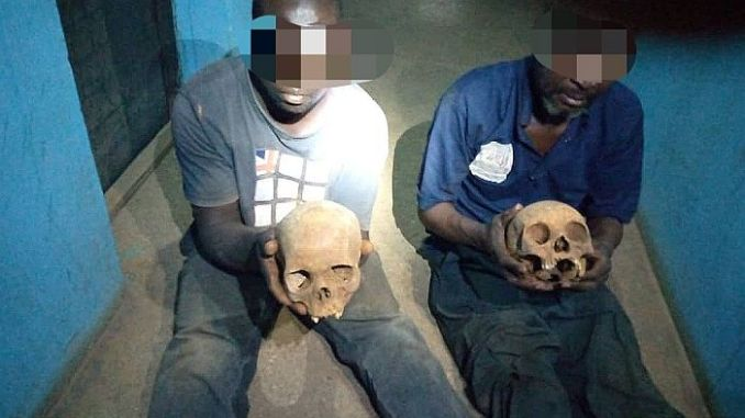 Two Arrested Allegedly With Human Skulls In Kaduna (See Photo)