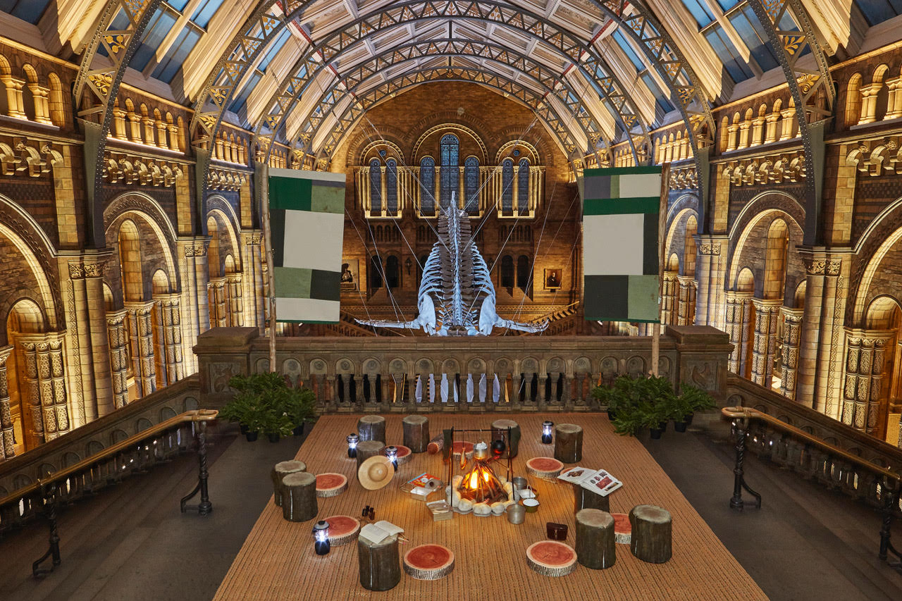 Airbnb Launches Base Camp Natural History Museum
