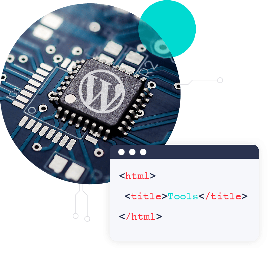 A few lines of code from a WordPress website