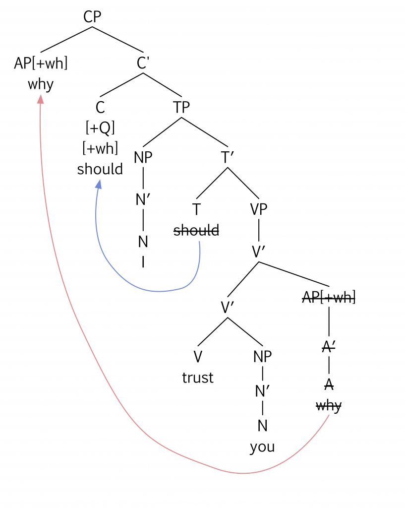 hight resolution of which tree diagram correctly represents the surface structure for the question why should i trust you
