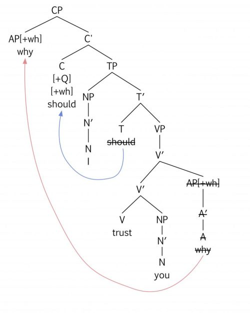 small resolution of which tree diagram correctly represents the surface structure for the question why should i trust you