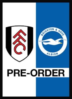 Fulham v Brighton & Hove Albion