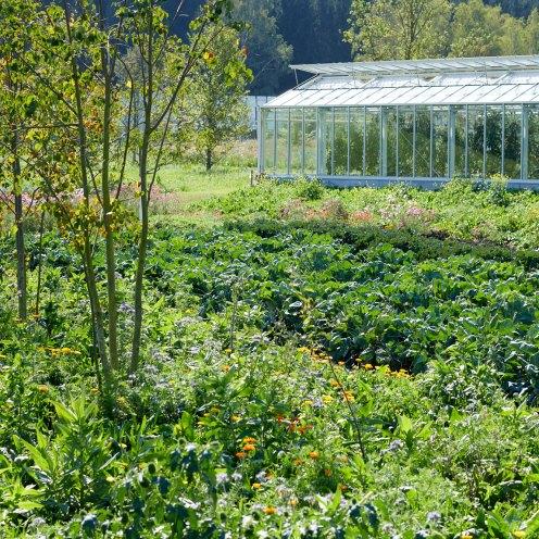 Grüne Erde-Welt Gewächshaus