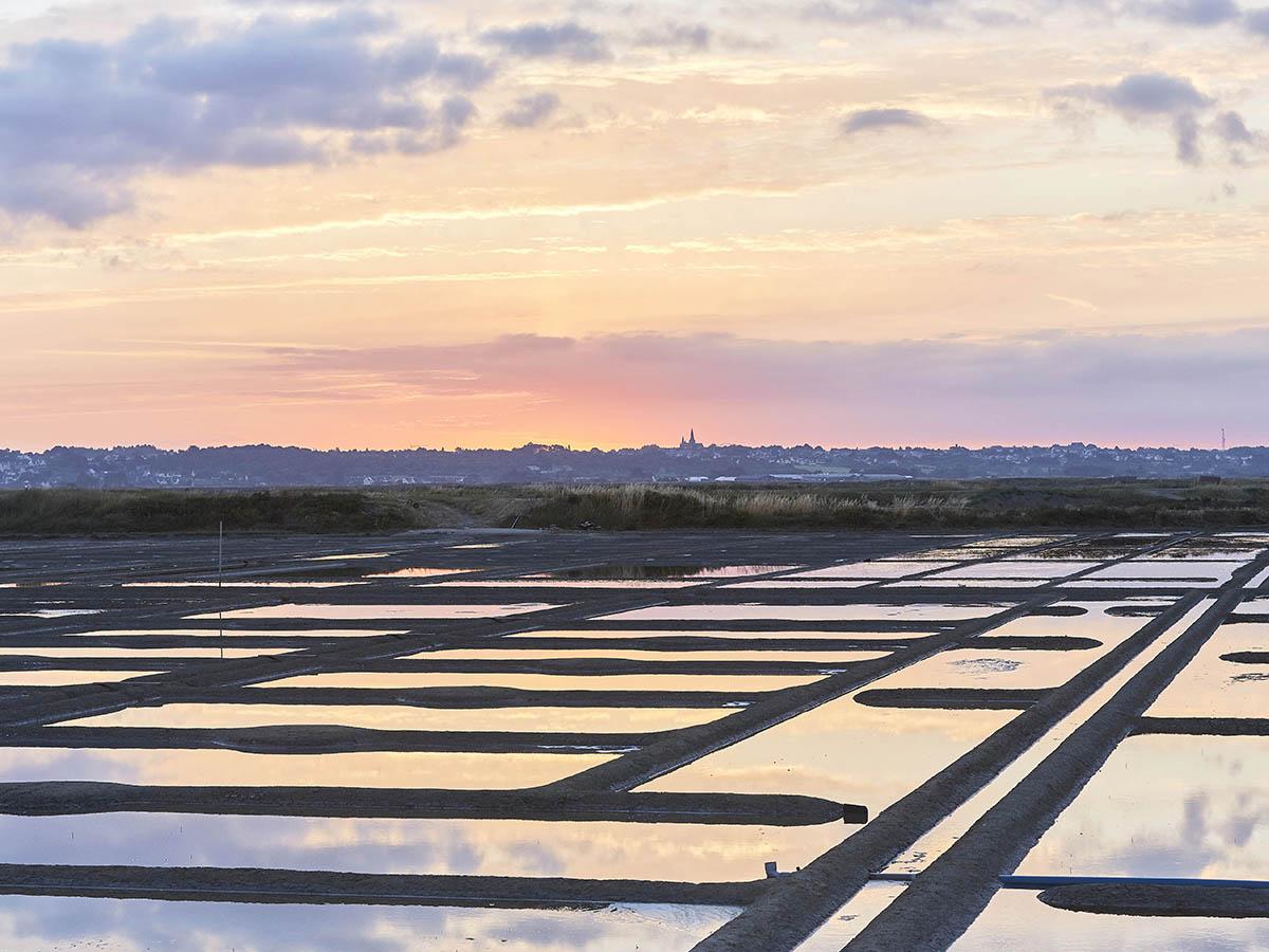 Promenade dans les marais salants de Gurande  Tourisme Loire Atlantique  Espace Press