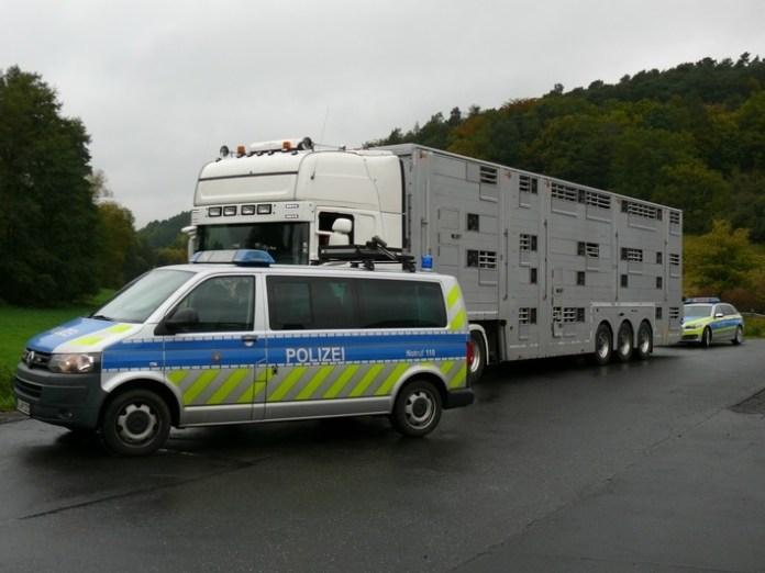 pol-fd-tiertransporte-erneut-im-fokus-der-polizei-in-osthessen