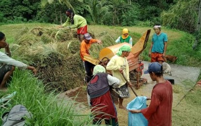 Farmers to benefit from 19.4B in irrigation projects this year – NIA