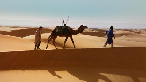 Exit-Marrakech-©-2013-StudioCanal-(9)
