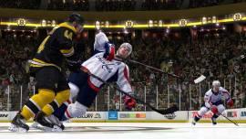 NHL-14-©-2013-EA-(2)