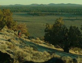 Trailer: Wild