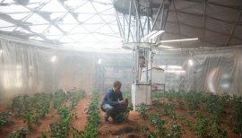 Der-Marsianer-(c)-2015-20th-Century-Fox(6)