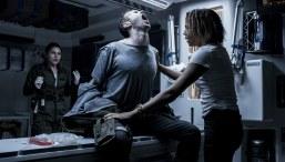 Alien-Covenant-(c)-2017-Twentieth-Century-Fox(6)
