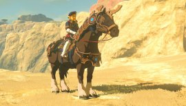 The-Legend-of-Zelda-Breath-of-the-Wild-DLC-(c)-2018-Nintendo-(5)