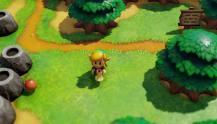 The-Legend-of-Zelda-Links-Awakening-(c)-2019-Nintendo-(2)