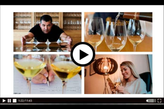 provas de vinho em casa