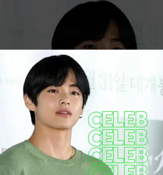 BTS V was offered 'Voice Donation' by the Cultural Heritage Administration