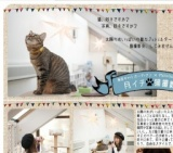 1456519 thum - 月イチ猫撮影会 ネコサツ!!