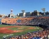 1595901 thum - 20代30代40代 関内駅前野球好き飲み会(横浜)