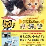 1596651 thum - にゃんクルー譲渡会