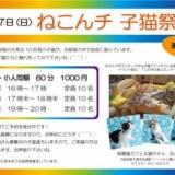 1597581 thum 1 - ねこんチ子猫祭り