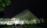 1597799 thum 1 - 夜間特別開園「夜の温室は発見がいっぱい!!」