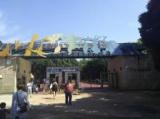 1599615 thum - 30代40代中心 千葉市動物園出会い散策
