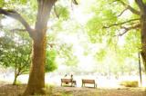 1602505 thum - 9/24 目黒の人気カフェで朝活やります! (月曜・お茶代のみ) 【東京】