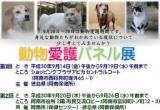 1603940 thum - 動物愛護パネル展