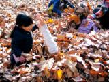 1605541 thum - 葉っぱのわんだーらんど! 〜幼児のための自然体験プログラム〜