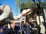 1608050 thum - 浅草伝統文化まつり