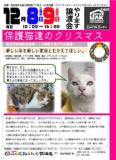 1608415 thum 1 - 保護猫たちのクリスマス