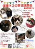 1608728 thum 1 - もふもふ西宮 保護猫の譲渡会