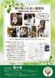 1609719 thum - 猫の森 ふれあい譲渡会