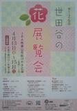 1616607 thum 1 - 春の風物詩!世田谷の花展覧会 | 世田谷区