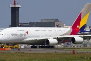 1108 12 1 - アシアナ航空の売却 韓国の3グループで入札へ