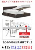 1630563 thum - ★12/21(土)22(日)東京ベッド【六本木ギャラリー】『ご招待フェア』
