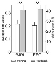 New insights in motor imagery from real-time EEG feedback during concurrent fMRI (Fig.2): Feedback effect in EEG and fMRI activity.