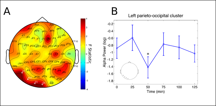 UR Schenberg - Figure 2: Alpha rhythm cluster. Changes in alpha frequency band power spectrum over the 2 hours since ayahuasca ingestion. A) F statistics in the entire scalp revealed a significant cluster at left parieto-occipital electrodes (P7, PO7, O1 and Oz, p = 0.0398, highlighted by white *). B) Post-hoc analysis revealed decreases in the cluster depicted at left to be significant after 50 minutes from ingestion of ayahuasca (*p<0.05, corrected). Inset highlights the electrodes averaged for the post-hoc analysis, in correspondence with A. Data in B is expressed as mean and standard error.