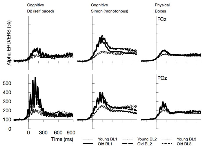 Met at work - Figure 3. Time course of Alpha synchronization for the three tasks and two EEG channels, superposed for the 3 Blocks in the experiment (BL1, BL2, BL3). Data are time locked to the maximum of vEOG activation during the blink. Most prominently, Alpha synchronization was more pronounced in older adults.