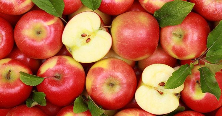 group-red-apples-their-leaves